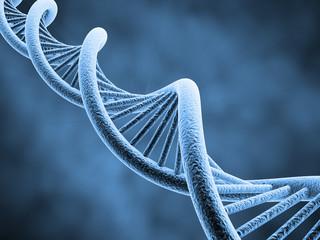 Klonowanie i podejrzane eksperymenty: Co się dzieje w chińskich laboratoriach medycznych