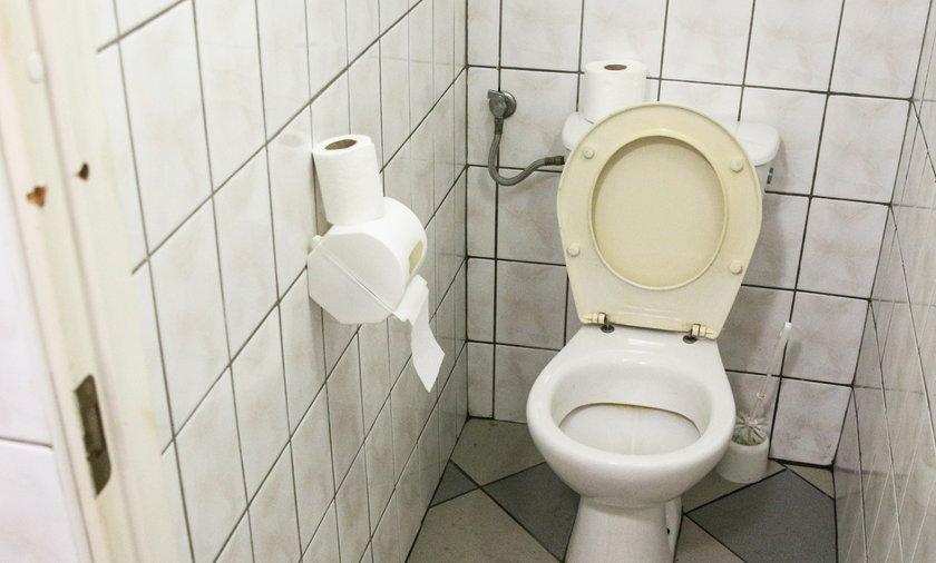 toaleta sedes urząd remont