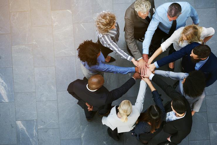 portal za kolaboraciju oglas
