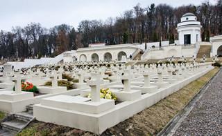 Wiceszef MSZ: Zdecydowanie sprzeciwiamy się usuwaniu lwów z Cmentarza Orląt