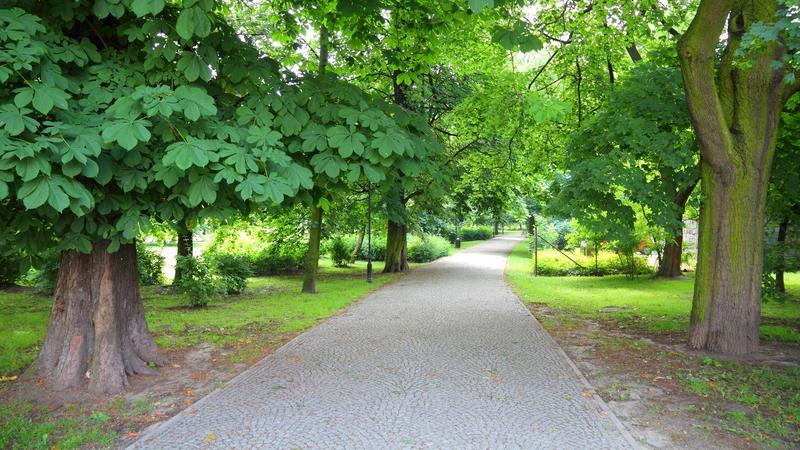 Najstarszy park miejski w Polsce, Kalisz