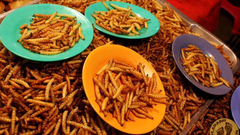 Azjatyckie jedzenie - robaki, węże, pająki
