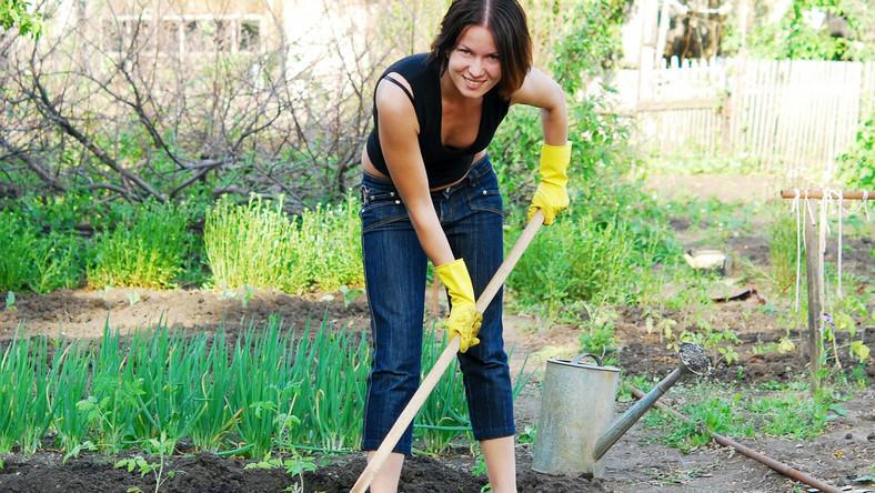 Praca w ogrodzie to samo zdrowie