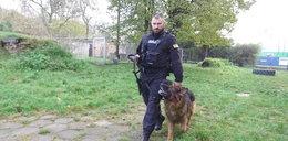 Policyjny pies Dragon przechodzi na emeryturę
