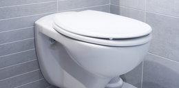Tworzą inteligentną toaletę. Przeanalizuje to, co do niej wpadnie