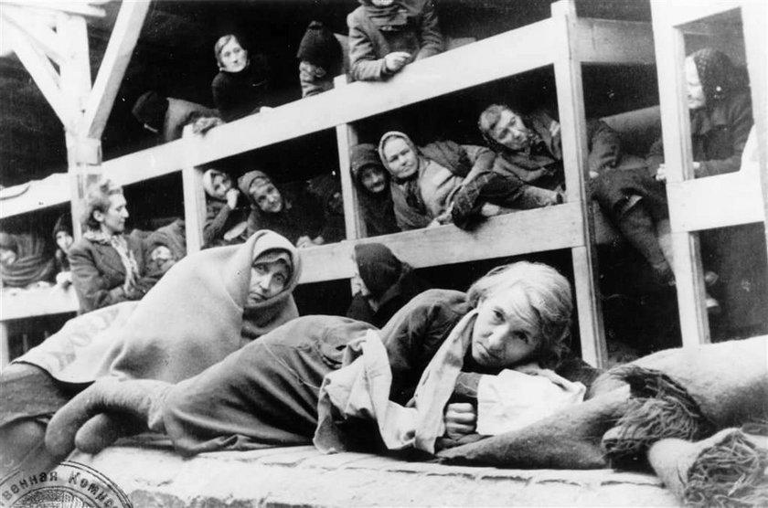 """Skandal! Wykopali w Polsce """"skarb SS"""" i wywieźli do Niemiec. Szuka ich IPN!"""