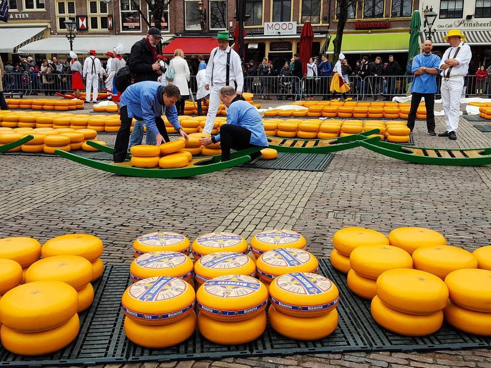 Festiwal sera w Alkmaar
