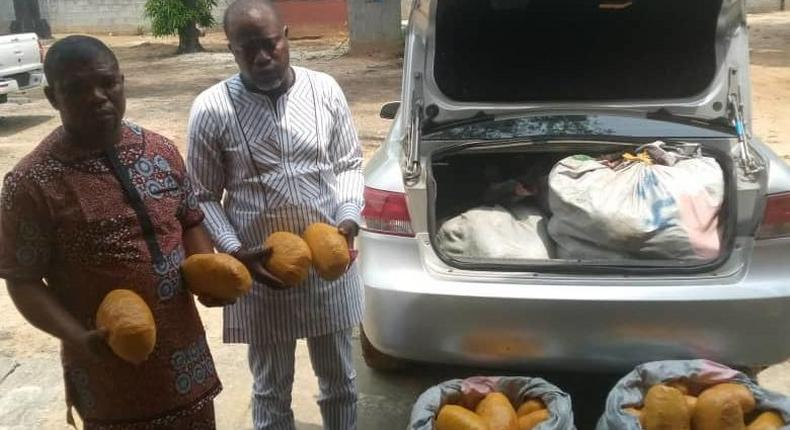 Suspected drug peddlers caught smuggling 115kg of Cannabis Sativa into-Rivers state. [NAN]
