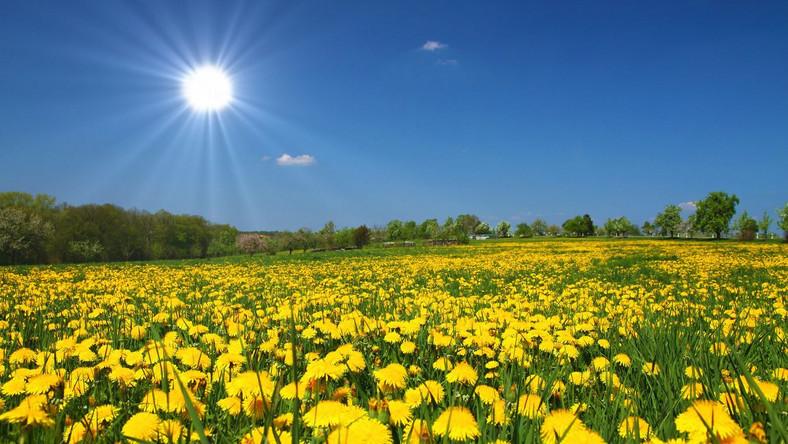 Słoneczna pogoda