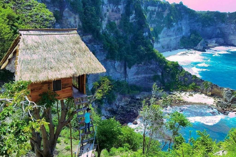 tree house in indonesia