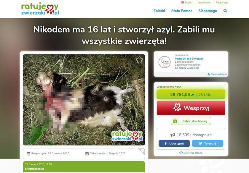 Miastko: ktoś bestialsko wymordował zwierzęta w azylu