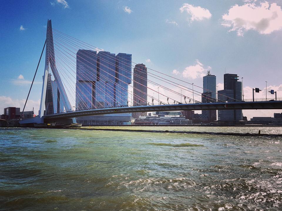 Rotterdam. Most Erazma ma ponad 800 metrów długości, a Rotterdam jest największym portem w Europie.