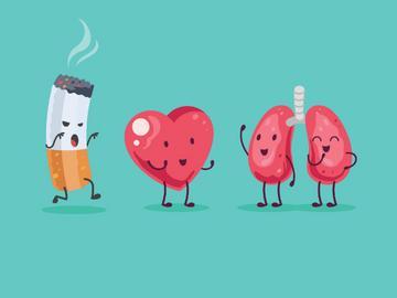 törölje a tüdőt a dohányzásról