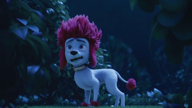 Kadr z filmu Wilk na 100 procent