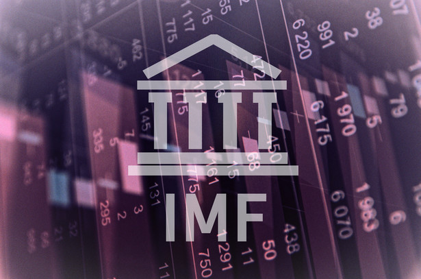 """W naszej gospodarce nie brakuje rzeczy, które podobają się MFW. Jest to m.in. łagodna polityka pieniężna, """"znaczące dostosowanie"""", jakie miało miejsce w ostatnich latach w polityce budżetowej czy ogólnie zdrowy sektor finansowy"""