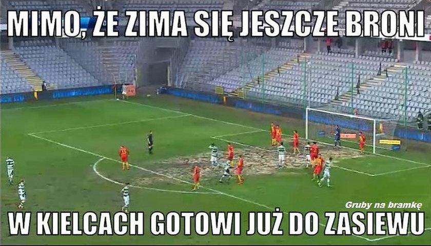 Krowa w polu karnym. Fani kpią z fatalnej murawy w Kielcach. MEMY