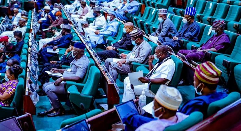 Lawmakers during plenary in the Federal House of Representatives chamber [Twitter/@NGRHouse]