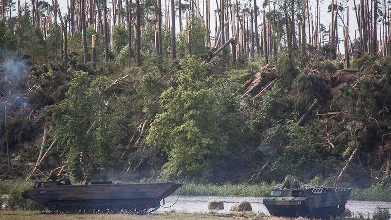 Nawałnica zniszczyła tysiące hektarów lasów państwowych i prywatnych