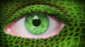 """""""Oczy Raechel"""" - czyli spotkanie z hybrydą"""