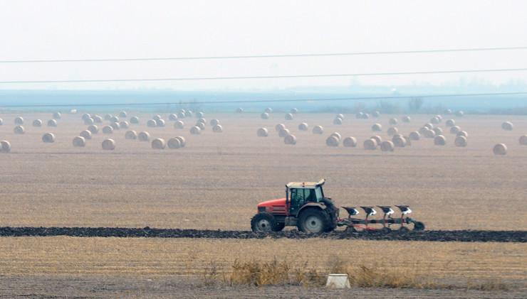 Zmajevo 1319 njive oranice oranje traktor foto Nenad Mihajlovic