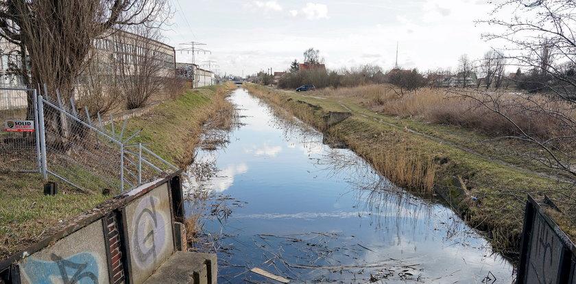 Gdańsk broni się przed powodzią. Powstanie specjalny wał