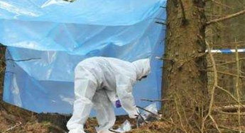 forensic expert at crime scene in forest