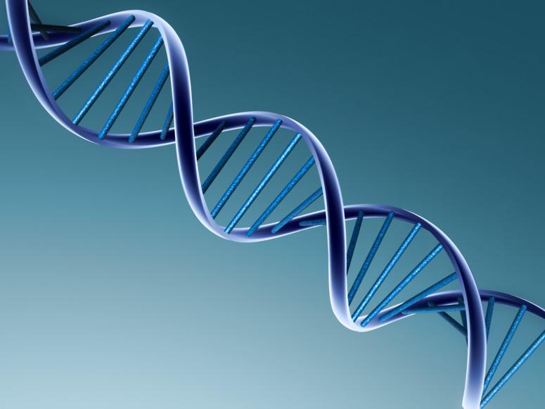 Serwis randkowy pasuje do DNA