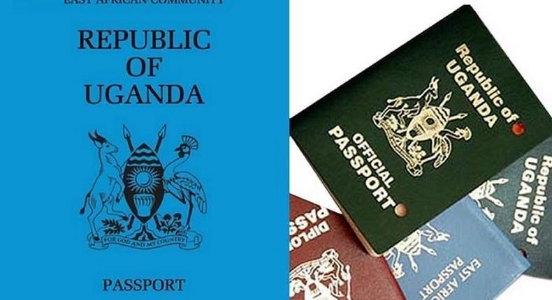 African passports