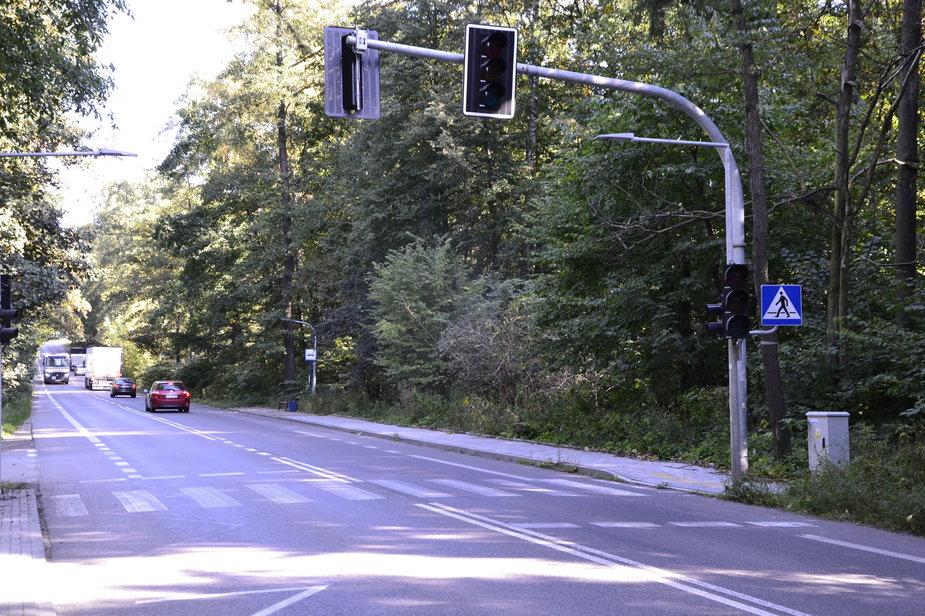 Sygnalizacja na ulicy Konstantynowskiej w Zgierzu