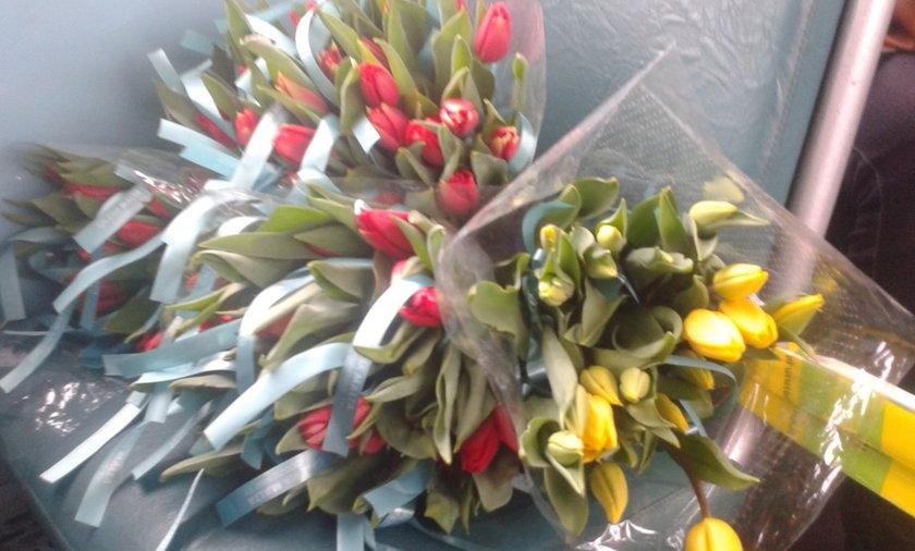 Rozdawali tulipany w tramwaju w Łodzi