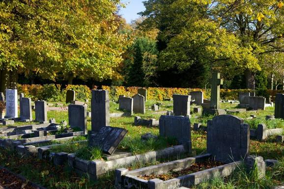 Autorka Džo Vigor Mungovin smatra da je Merikovo meko tkivo sahranjeno na londonskom Gradskom groblju
