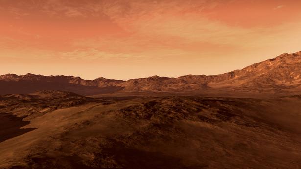 """""""Jeśli więc Elon Musk deklaruje, że za sześć lat rozpocznie kolonizację Marsa, nie ma miejsca na kpinę i niedowierzanie. Trzeba mu kibicować."""""""