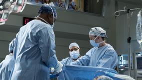 """""""Grey's Anatomy: Chirurdzy 14"""" od 22 listopada na FOX. 8 ciekawostek o serialu"""
