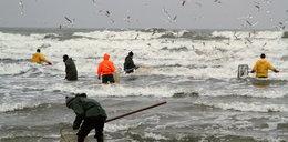 Szał połowów bursztynu nad Bałtykiem!