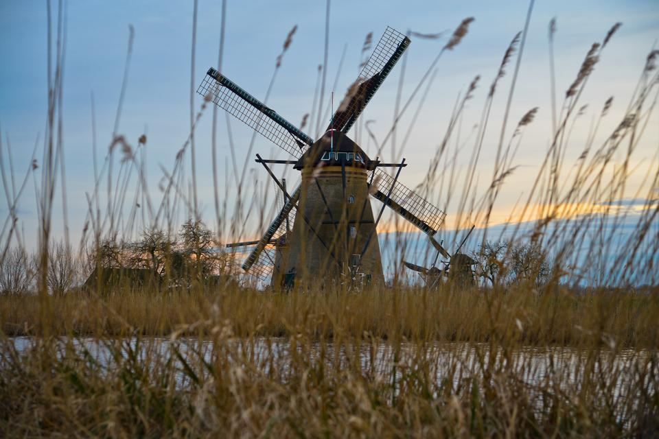 Kinderdijk to największe skupisko zabytkowych wiatraków w całej Holandii i jedna z najbardziej znanych atrakcji turystycznych kraju.