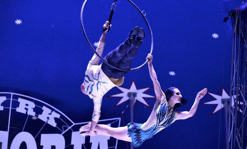 W cyrku Wictoria występują akrobaci i hologramy zwierząt