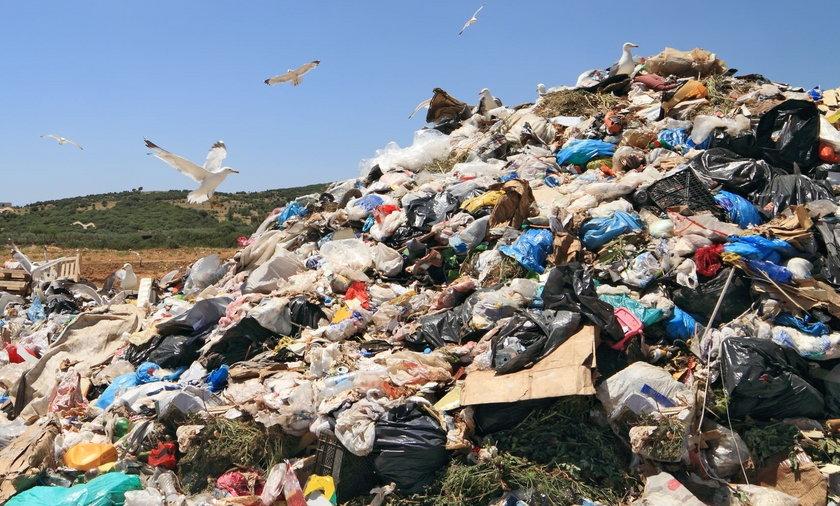 Góra śmieci w Bogatyni