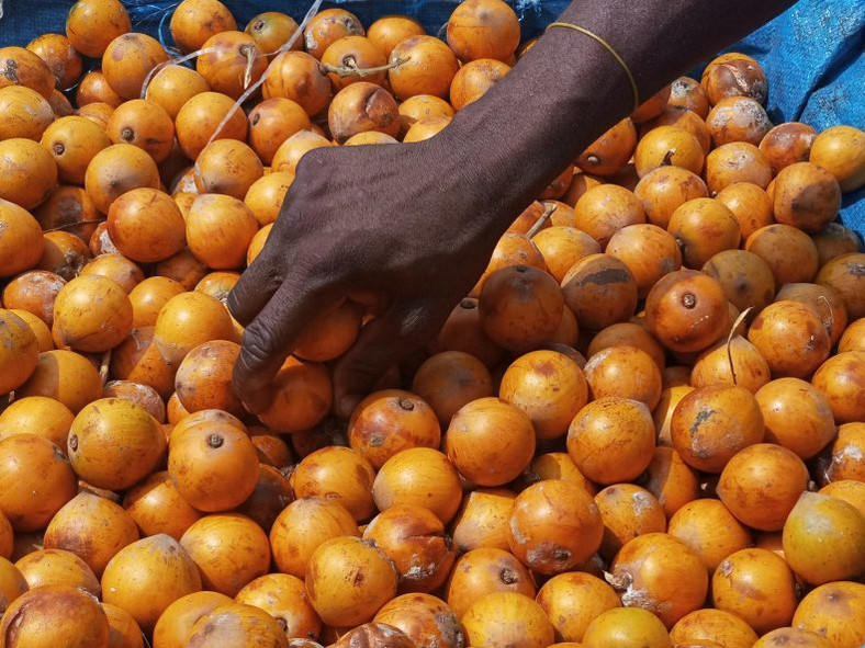 Health benefits of African star apple/Agbalumo/Udara [Kitchen butterfly]