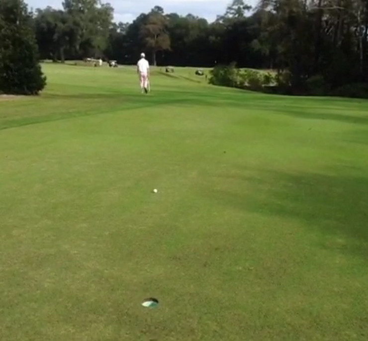 439426_golf-02