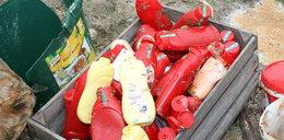 Kpina! 500 zł kary za zepsutą żywność