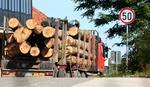 Foča: Bespravnom sečom šume pričinjena šteta od 60.000 KM