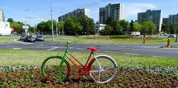 Nietypowe ozdoby na 700 lecie Lublina. Znajdziemy je wśród kwiatów