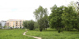 Warszawiacy chcą parków