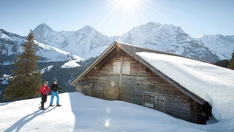 Jungfrau - alpejski park rozrywki w cieniu Eigeru