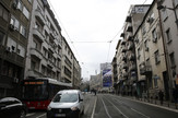 hronika foto vesna lalic (1)