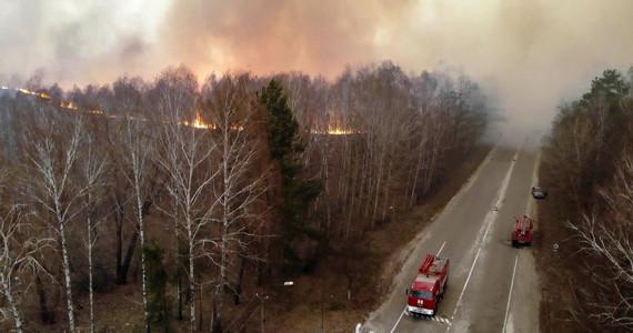 Pożar w Czarnobylu. Ogień blisko najbardziej skażonego miejsca w ...