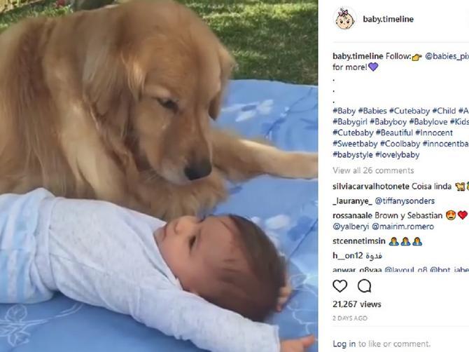 Ma ništa slađe od OVOGA nećete videti danas: Beba i pas su celom svetu pokazali NEKE MNOGO VAŽNE STVARI!