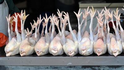 Korité 2021 : «Le poulet disponible malgré une légère tension sur l'offre », rassure l'Ipas