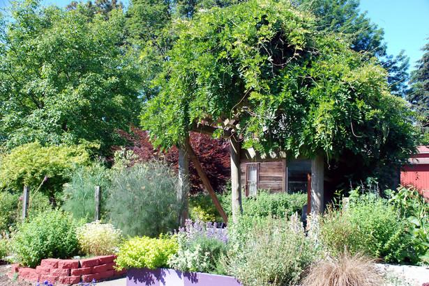 Projekt PiS przewiduje m.in., że zakładaniem ogrodów działkowych zajmą się gminy, proponuje możliwość wykupienia działek przez użytkowników za 1 proc. ich wartości.