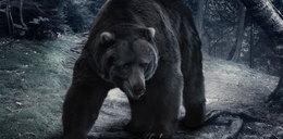 Chciał zrobić selfie z niedźwiedziem. Tragedia na oczach ludzi